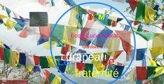 Le drapeau de la Fraternité CM1CM2 Ecole Lucie Aubrac Gardanne 2015