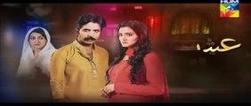 Ishq e Benaam Episode 33 Promo HUM TV Drama 22 Dec 2015