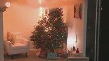 Fêtes de fin d'année : attention aux incendies de sapins