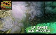 Tourismes de la Méditerranée - La danse des méduses