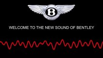 Pedal 2 Metal - Sound of Bentley