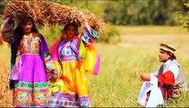 Naghma -Lov Dy Da Ghanamo Yara-Pashto Afghani hit Song