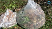 TIPA Launches Compostable Biodegradable Packaging