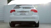 Foreign Auto Club - Audi A3 e-tron