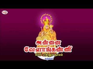 Christian Devotional Song on Mary Matha - Mary Ennum Namam