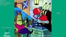 SpongeBob Ruined Vine Compilation (Voice Over) All SpongeBob Ruined Vines   BEST VINES ✔