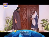 Bulbulay Ep - 379 - ARY Digital