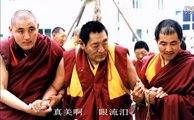 《扎西持林冬日札记—无尽藏》—希阿荣博堪布 -Khenpo Sherab Zangpo Rinpoche -Limitless Treasure