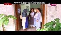Bheegi Palkein Episode 7 Full on Aplus - 25 Dec 2015