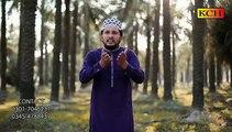 Mery Pak Patan Dy Baba  Nu Her Door Sallaman Karda Ay ||Wassem Abbas Chishti ||