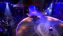 51 e Gala de l'union des artistes - Dressage Equestre : Saida Jawad  & Anne Gravoin