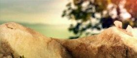 CGI VFX Studio Showreel HD: Platige Image: Showreel 2015