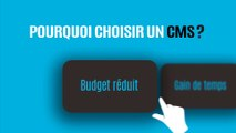 Création de site web CMS au Maroc : Wordpress, Joomla, Drupal, Magento, Prestashop ...