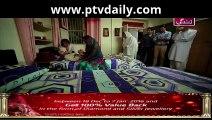 Behnein Aisi Bhi Hoti Hain » ARY Zindagi » Episode 354»  28th December 2015 » Pakistani Drama Serial