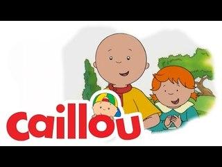 Caillou - Pumpkin Patch Kid  (S02E08)
