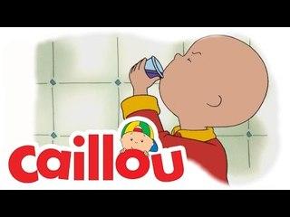 Caillou - Say Cheese  (S02E10)