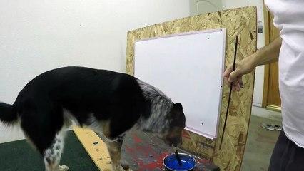 Le chien Jumpy sait écrire son nom
