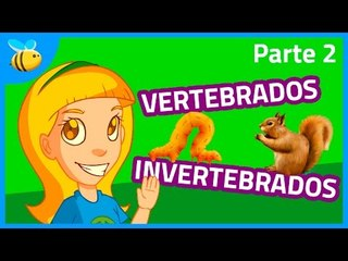 Animales Vertebrados e Invertebrados (Parte 2) - Aula365