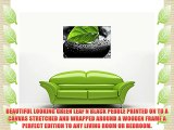 GREEN LEAF ON BLACK PEBBLE ON FRAMED PRINTS CANVAS WALL ART PICTURES FLORAL ART SIZE: 40 X