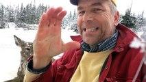 Cet homme sourd vient de sauver un cerf en train de mourir dans un lac gelé