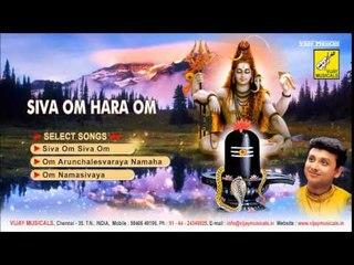 Siva Om Hara Om | Unni Krishnan, Ramu | Music: D.V.Ramani