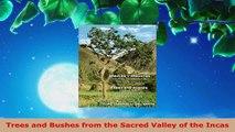 InfiniteSkills Tutorial | Revit Architecture Adding Trees And Bushes