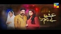Ishq e Benaam Episode 39 Promo HUM TV Drama 30 Dec 2015