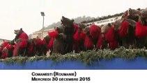 Roumanie : des habitants célèbrent la fin de l'année déguisés en ours