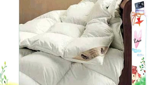 Viceroybedding Luxury 40% Down Single Size All Seasons Goose Feather and Down Duvet