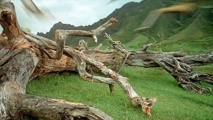 Jurassic Park (6/10) Movie CLIP - Theyre Flocking This Way! (1993) HD
