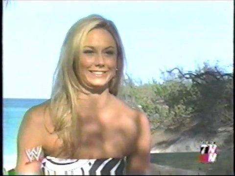 Who's Stacy - the evolution of Stacy Keibler