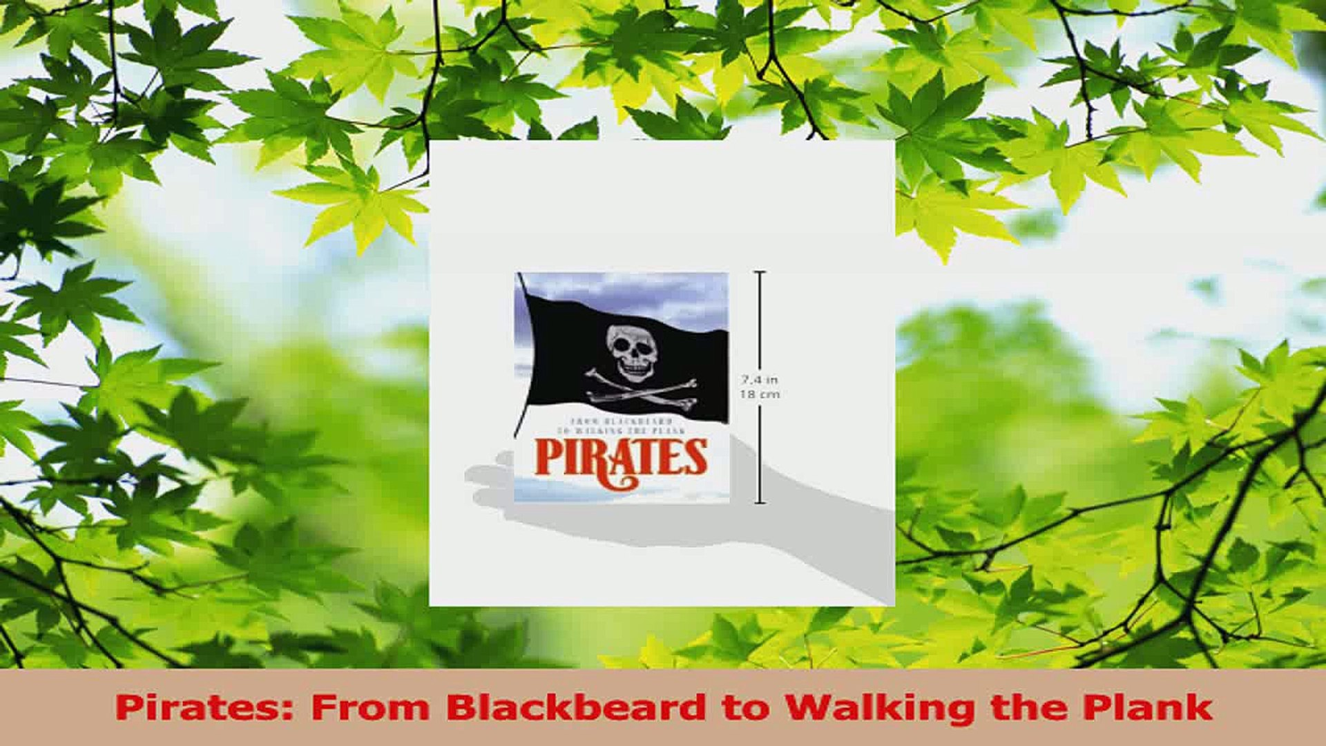 Read  Pirates From Blackbeard to Walking the Plank PDF Free