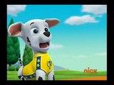 Cartoon Nick JR Movies 2016 - PAW Patrol Pups Save a Mer Pup