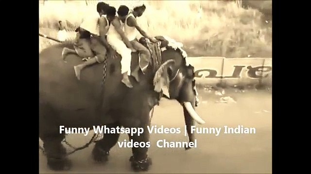 KILLER ELEPHANT ATTACK IN INDIA  INDIAN ELEPHANT RAMPAGE IN INDIA