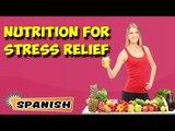 Manejo nutricional para aliviar el estrés | Nutritional Management For Stress Relief in Spanish