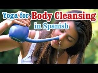 Yoga para la limpieza del cuerpo | Yoga for Body Cleansing | Body Detoxification, Improve Digestion