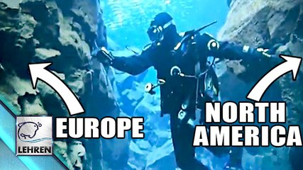 What?? Swimming Between Two Continents?
