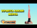 Viparita Karani Mudra | Yoga per principianti | Yoga For Better Sex & Tips | About Yoga in Italian