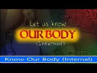 Let Us Know Our Body (Internal) - Fun And Learn Series in English