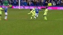 All Goals HD - Everton 2-1 Manchester City - 06-01-2016