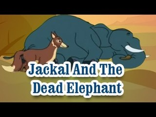 Jackal And The Dead Elephant | The Grandpa's Stories English