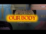 Learn Human Body External Parts | Fun And Learn Videos | English