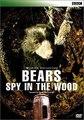 Medvědi - špionáž v lese -dokument (www.Dokumenty.TV) cz / sk