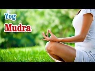 Yog Mudra -  Yoga of Your Hands, Mudra, Yoga Hand Gesture in English