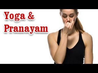 Yoga And Pranayam - Health Wellness ,Yoga Breathing and Diet Tips in English