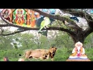 Bana Pahine Singh Ka Chale Bhed Ki Chal | Kabir Ke Dohe | Sant Kabir Amritwani