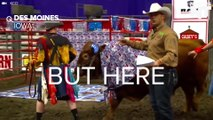 Rodeo Bulls Pick Presidential Candidates By Pooping On Them