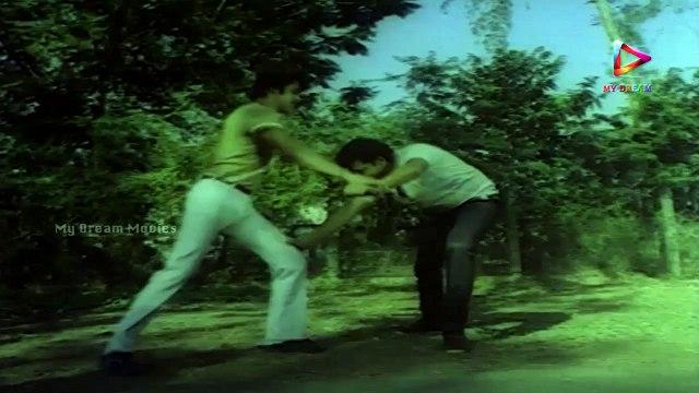 Action King Telugu Movie Back to Back Fighting Scenes || Arjun Sarja