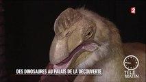 Visite guidée - Palais de la découverte : le retour des dinosaures - 2016/03/03