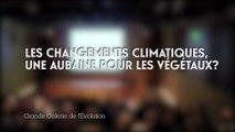 Les changements climatiques : une aubaine pour les végétaux ? (Changements climatiques et biodiversité 1/5)